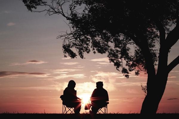 什么是伴侣治疗?