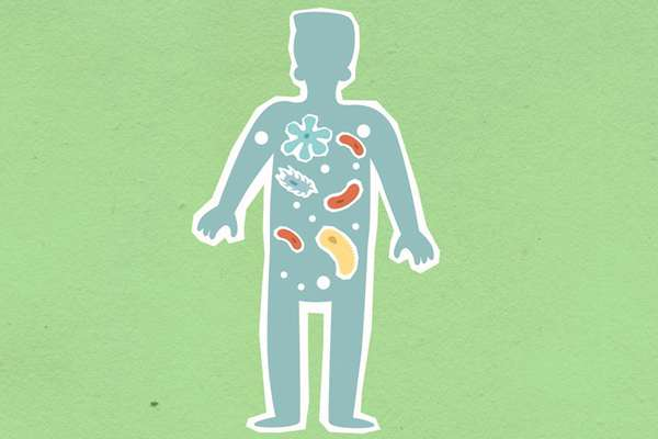 肠道细菌帮助你控制情绪